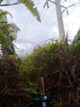 Acoustic device recording strike sounds at power pole