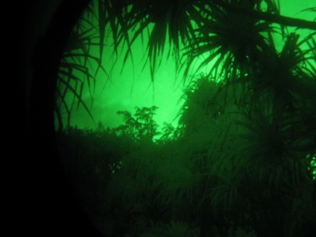 View through night vision goggles - photo by Andre Raine