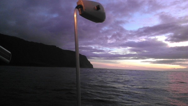 At sea experiment testing the relative seabird attraction rate of different street lights