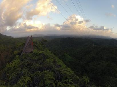 Visual observation survey location on the power line trail