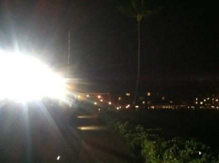 Bright city lights disorient seabirds