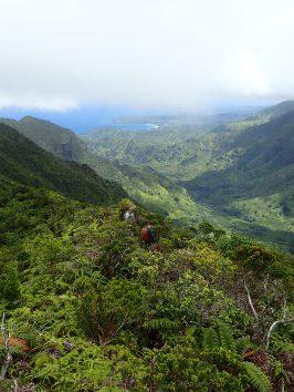 Hiking to remote burrows in Hono O Na Pali NAR. Photo by Erin Pickett