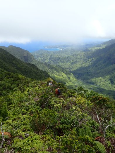 Hiking to remote burrows in Hono O Na Pali NAR. Photo by Erin Pickett