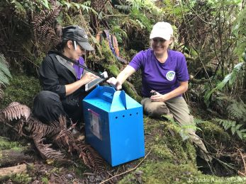Jennifer Rothe (KESRP) and Hannah Nevins (ABC) with a Hawaiian Petrel chick safely installed in its carrier box